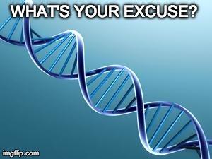 Genes Excuse Meme Audio Ammunition
